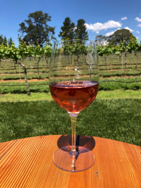 A glass of Bendooley Estate wine by the grape vines